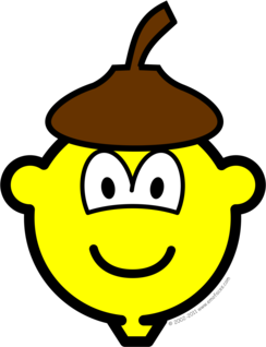 Acorn buddy icon