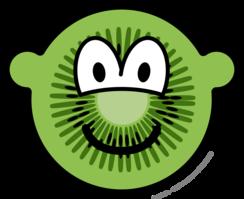 Kiwi fruit buddy icon