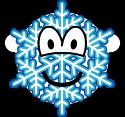 Snowflake buddy icon