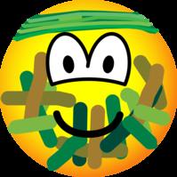 Camouflage emoticon