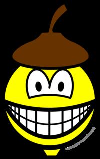 Acorn smile