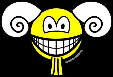 Aries smile