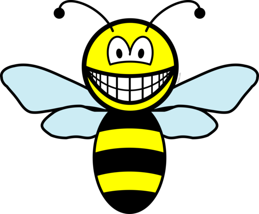 Bumble bee smile