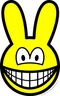 Bunny smile