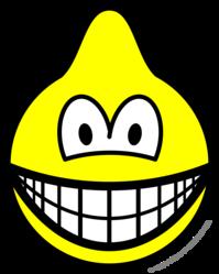 Dromedary smile