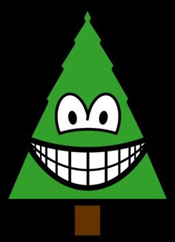 Conifer smile
