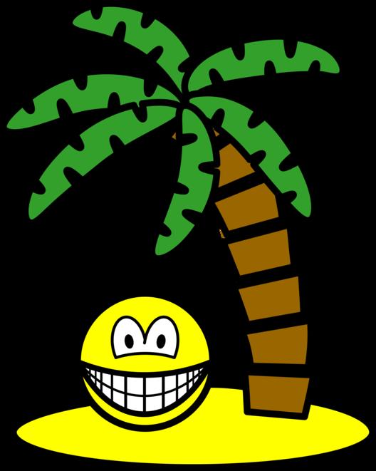 Desert island smile