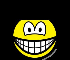 Disney world smile