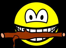 Fetching stick smile
