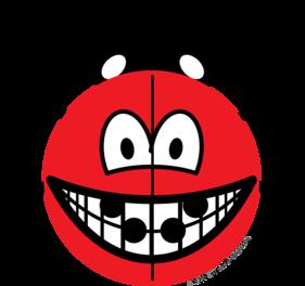 Ladybird smile