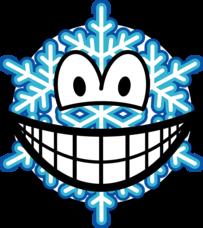 Snowflake smile