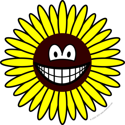 Sunflower smile