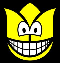 Tulip smile